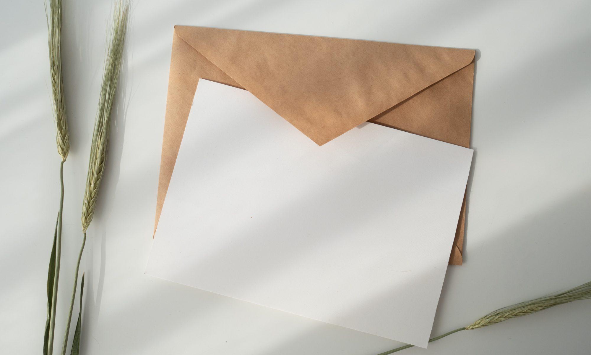 Newsletter! Frische Newsletter!